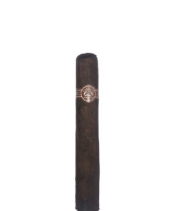 (Traditional) No. 5000 Maduro
