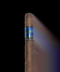 ACID Remi (Blue) Kuba Grande (Sumatra)